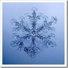 memoria-acqua-cristalli_thumb